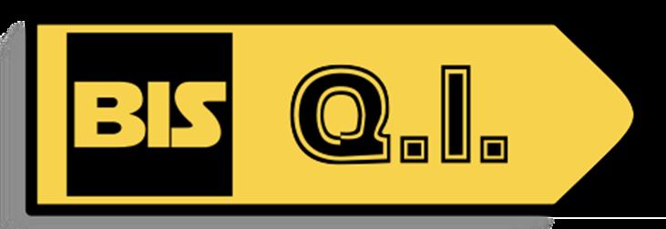 logo BIS-Q.I